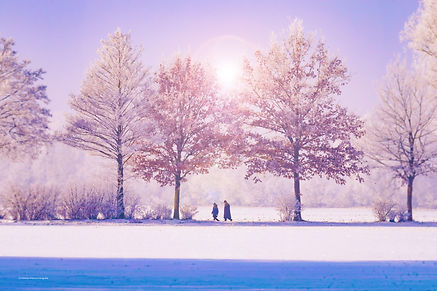 Couple walking in a winter forest