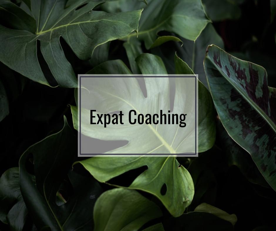 Expat Coaching