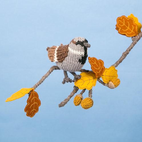 Sparrow Yarn pack