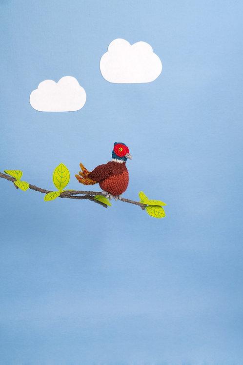 Pheasant Yarn pack