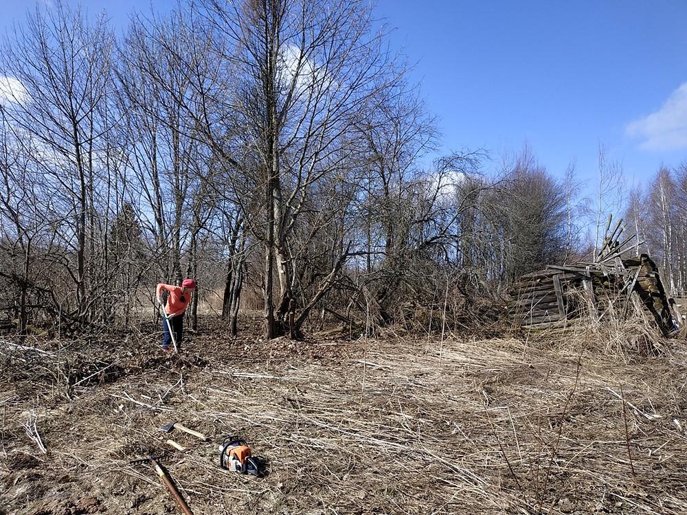 """В одной фотографии представлен полный фронт работ: высокая сухая трава, деревья, кустарники, старый дом. Все это предстоит очистить и довести до состояния """"чистого листа""""."""