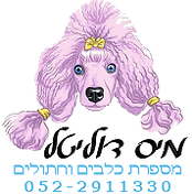 מיס דוליטל - מספרת כלבים וחתולים בתל אביב בית ספר לספרות כלבים