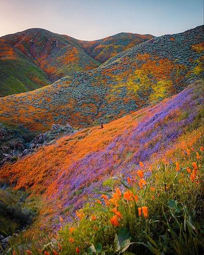 CA Mountains.jpg