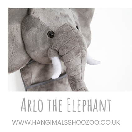 Arlo the Elephant close up!