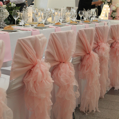 Pink Organza Chair Hood Covers