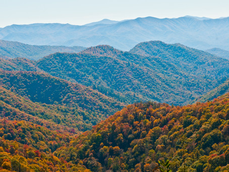Appalachia's Natural Gas Companies Could Benefit from Oil Slump