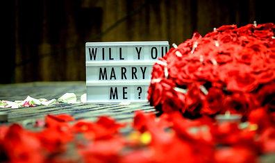 Demand en Mariage Bulle Eternelle
