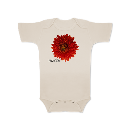 November (Chrysanthemum)