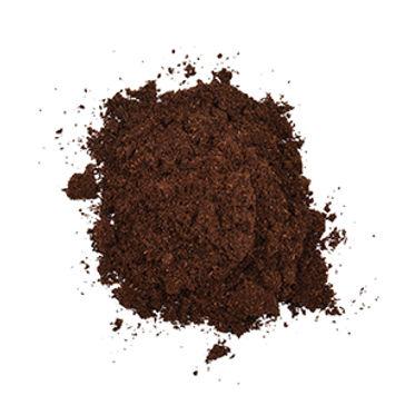 vanilla-bean-powder 2.jpg