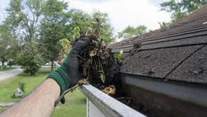 Gutter Maintenance Simplified: The Hows and Whys of Keeping Them Clean