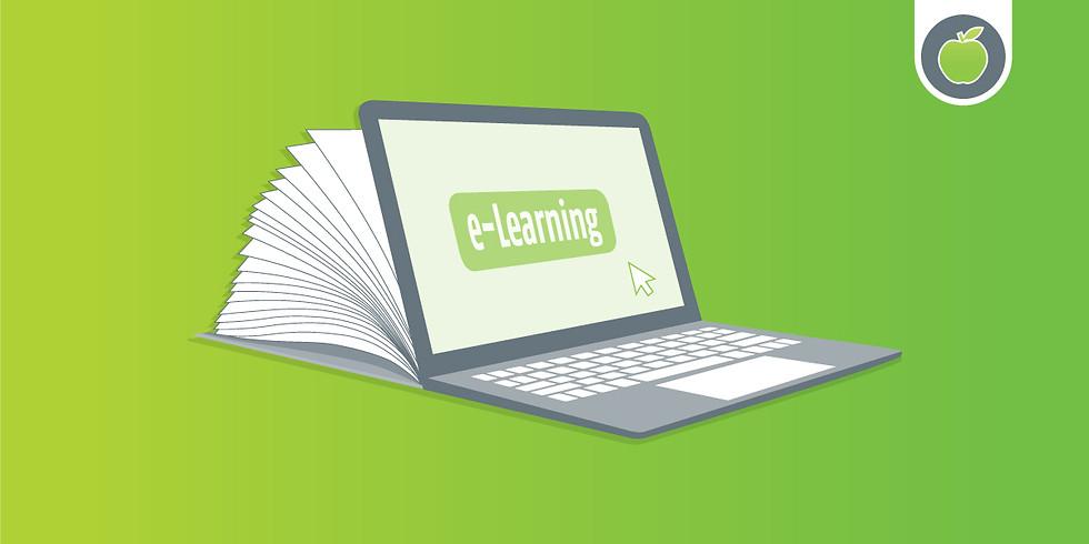 Steag.Kompakt e-Learning: Webinar