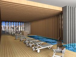 Projet de spa à Lyon (69)
