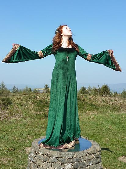 Velvet Handfasting / Ceremonial Gown