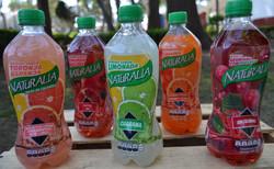 Bebidas Naturalia