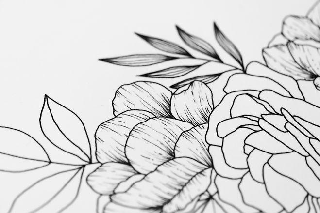 Illustrations-9.jpg