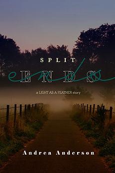 split ends cover 1.jpg