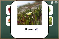 iOS Simulator Screen Shot 26 Mar 2015 17.09.49
