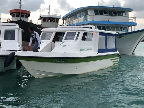 10 seater speed boat