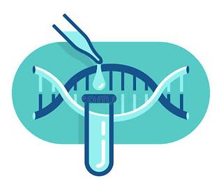 PCR Test price Maldives.png