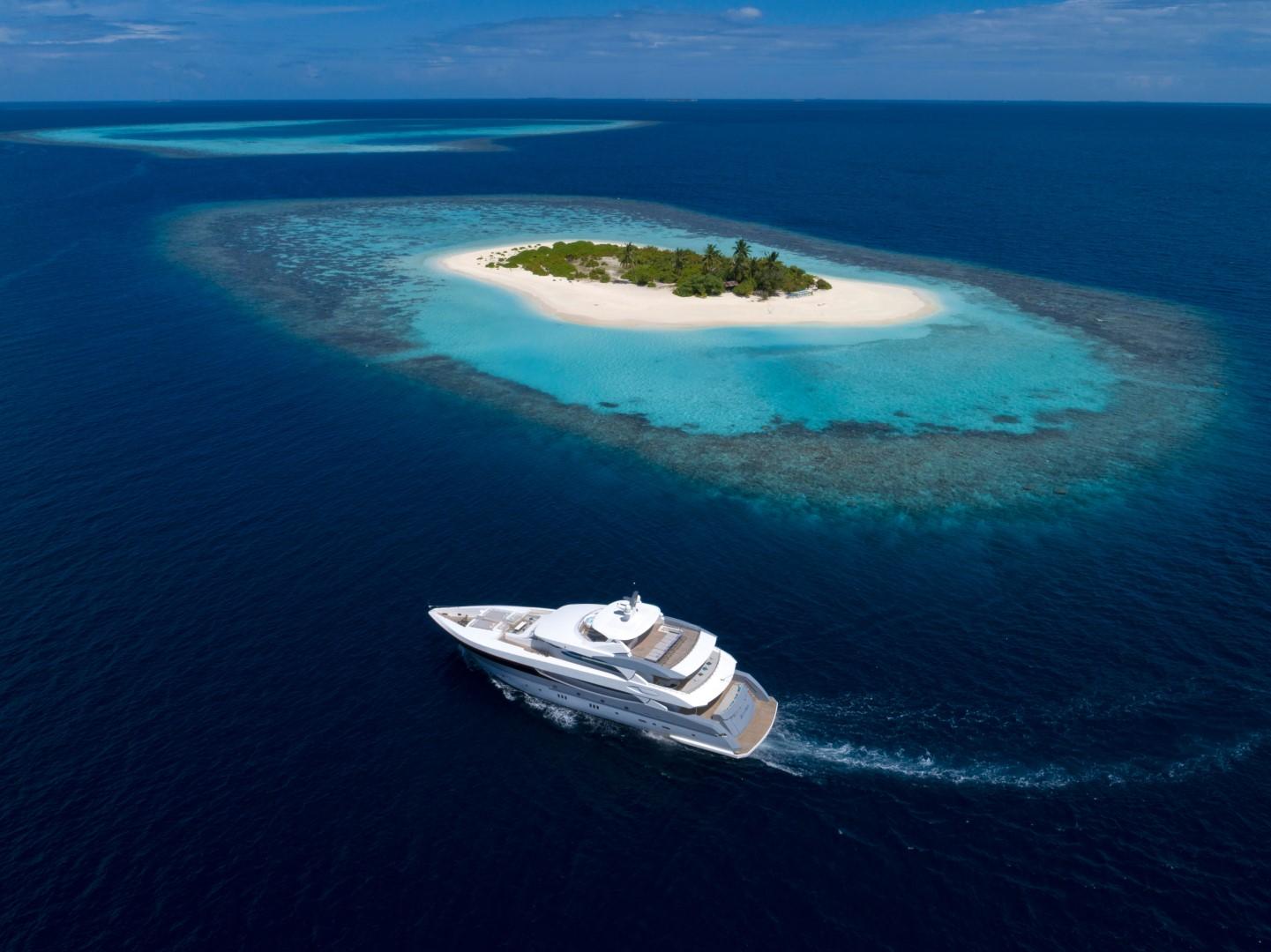 SeaRex_Cruise 3 (Large)