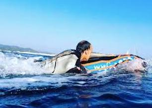 wave jam rent in Maldives .png