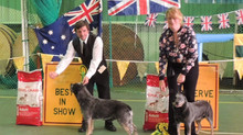 ACD Society Championship Show