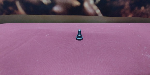 Spout support screw