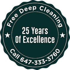 TOPMAXCLEANINGSERVICESINC LOGO2.png