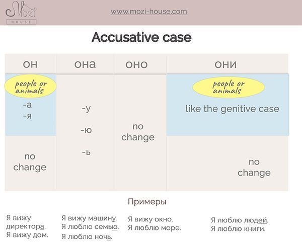 accusative for beginners.jpg
