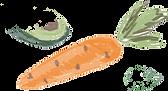 морковь.png