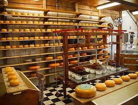 cheese-21824_1280.jpg