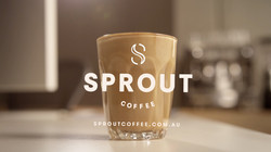 Sprout 03