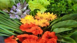 flores-da-horta