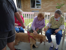 Mildred Erma and pat with puppy.JPG