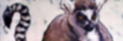 ring-tailed-lemur-carrie-cookart.jpg