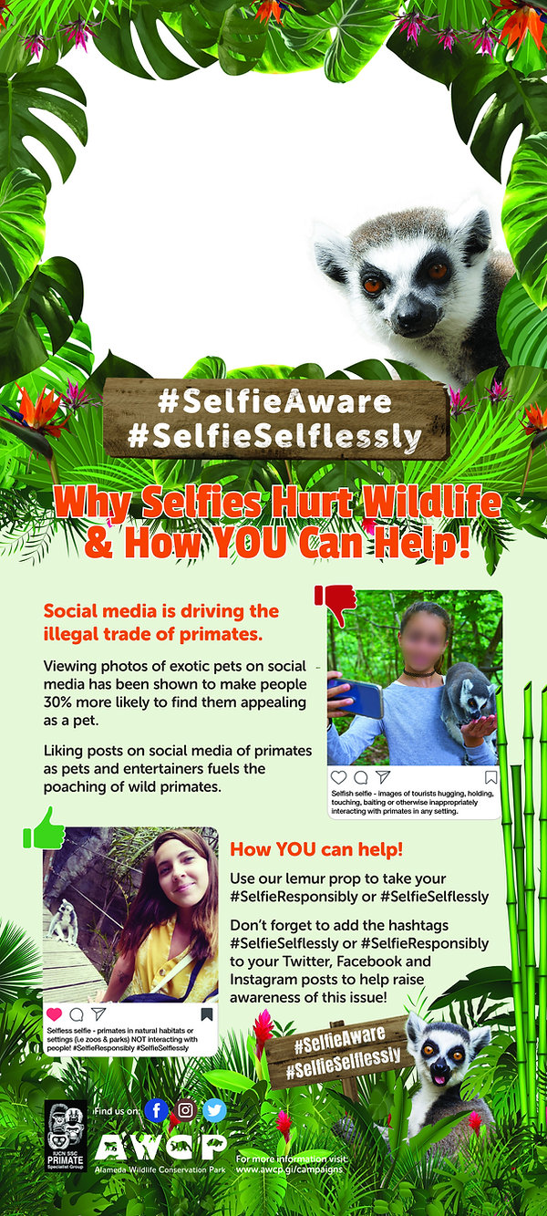 AWCP Selfie Poster v4.jpg