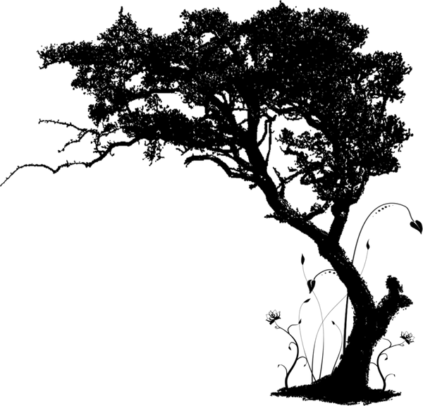 10618204_tree-of-life-silhouette-big-tre