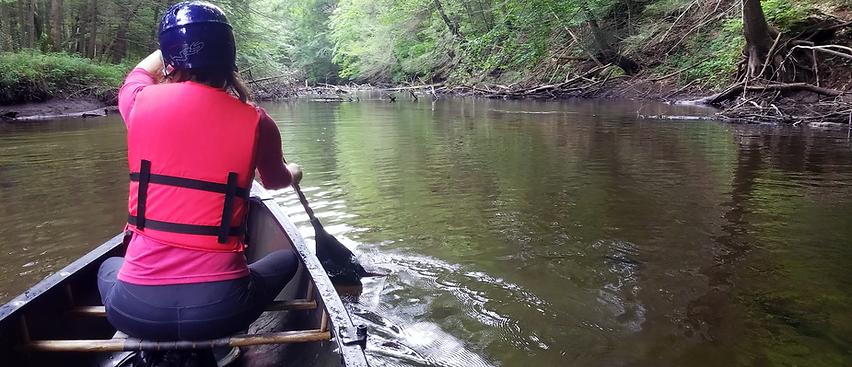 Paddling the Q River