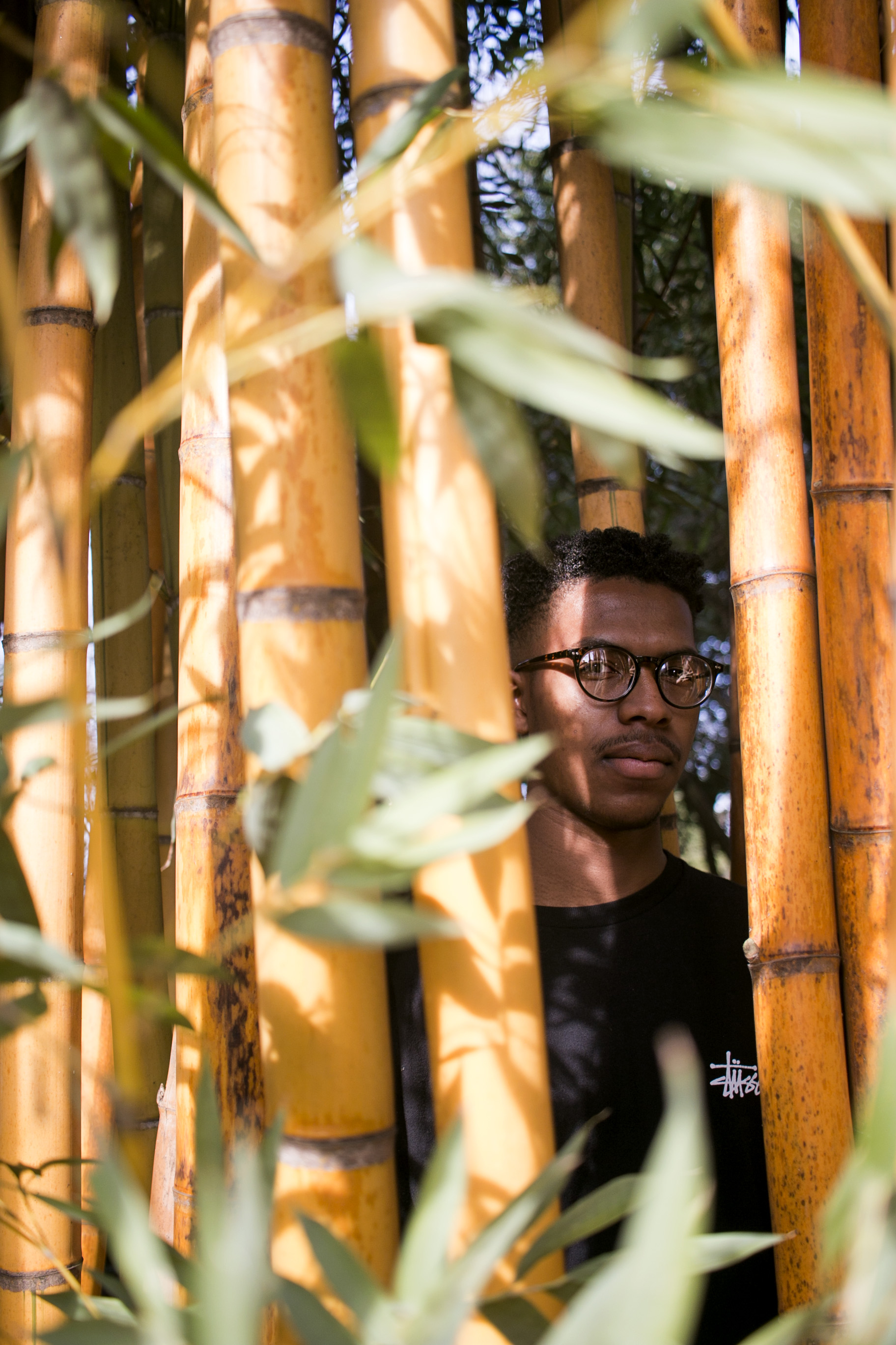 Sharod in the bamboo