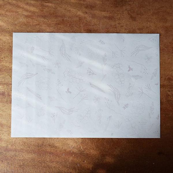 paper2.jpg
