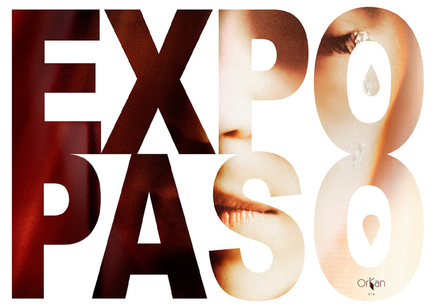 Expo Paso-1_pages-to-jpg-0001.jpg