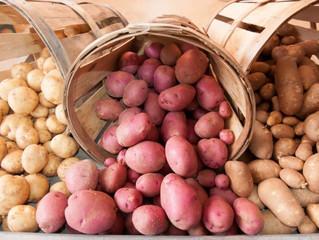 Картофель из семян.
