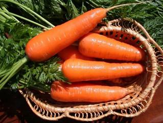 Самые сладкие сорта моркови.