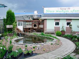 """Экскурсия в садовый центр """"Крокус"""" г.Тольятти."""