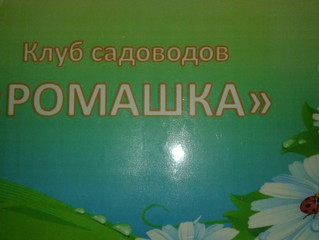 """Отчет работы клуба садоводов """"Ромашка""""за прошедший год."""