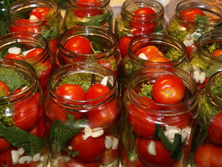 Засолочные сорта томатов для открытого грунта.