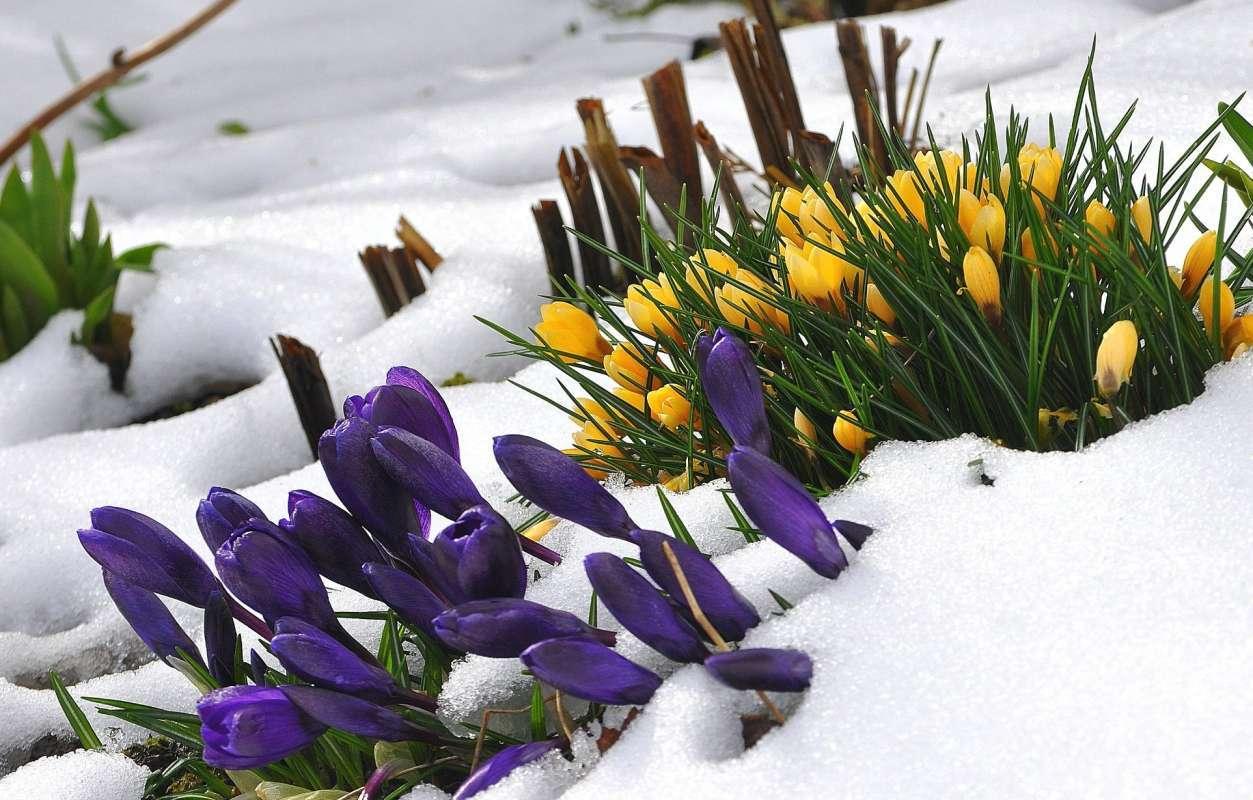 Март это весна или зима несколько секунд