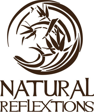 Natural Reflextions Day Spa