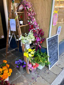 Flower Bombing Downtown
