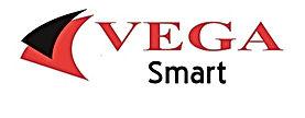 vega yazılım muhasebe programı